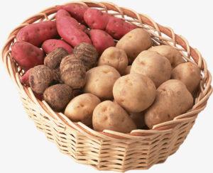 Pommes de terre et patates douces